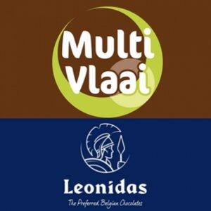 MultiVlaai logo