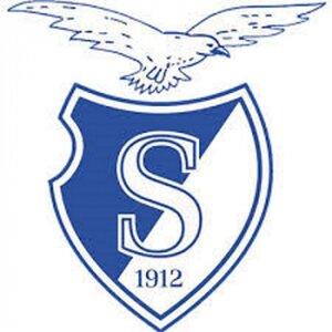 Stormvogels ijvv logo