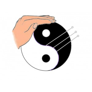 Jong Dynamic logo