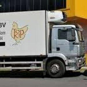 Top Kip BV image 2