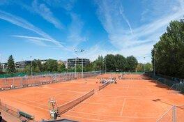 Maak kennis met Amstelpark Tennis