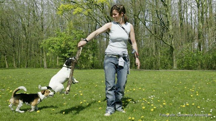 Veranderde toegankelijkheid honden op vier plaatsen in het Bos