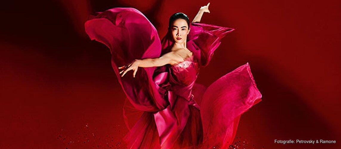Het Nationale Ballet presenteert op 8 september: Gala 2018