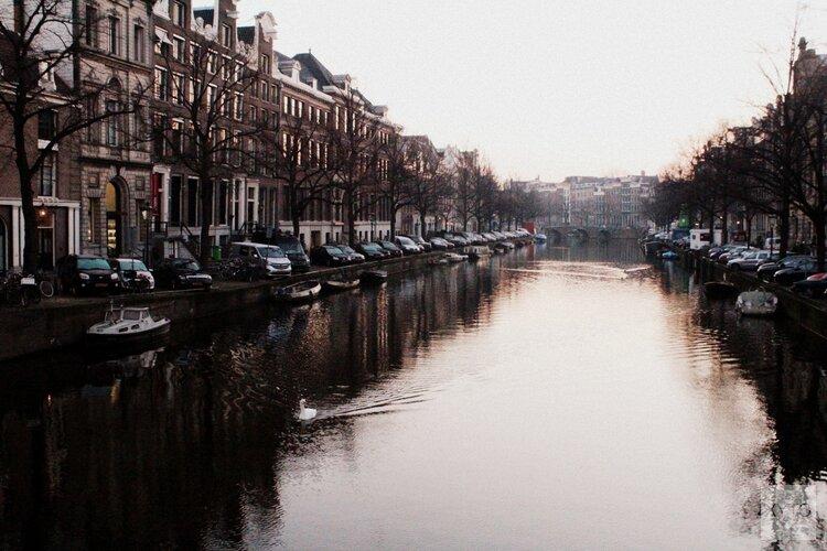Blauw-groene daken met EU-subsidie op Amsterdamse corporatiewoningen