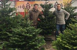 Kerstbomen Amsterdam heeft een ruim aanbod kerstbomen van zeer hoge kwaliteit