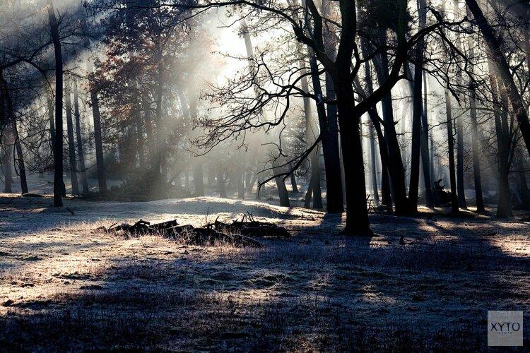 Toezicht in natuur- en stiltegebieden Noord-Holland krijgt 1.3 miljoen euro