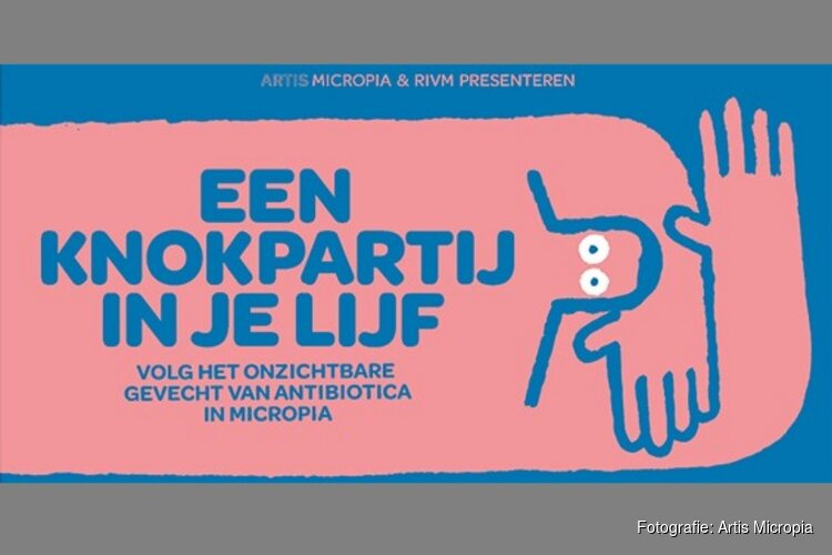 Knokpartij in je lijf - Artis Micropia