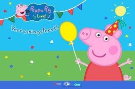 Peppa Pig Live! - Verrassingsfeest