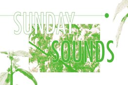 SUNDAY SOUNDS: MELLOW MUSIC EDITIE