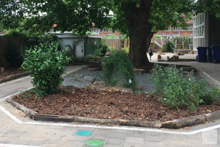 Amsterdamse schoolpleinen uitdagender en groener
