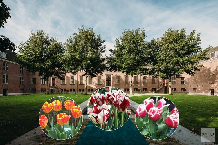 Opening Tulp Festival in Hermitage Amsterdam
