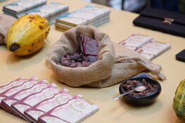 22 en 23 februari Chocoa Festival in de Beurs van Berlage Amsterdam