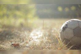 Organisatie EK voetbal plant voor iedere wedstrijd in Amsterdam een voetbalveld aan bomen