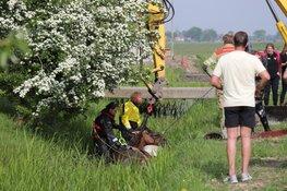 Brandweer redt paard uit benarde situatie in Weesp
