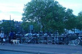 Museumbrug eenrichtingsverkeer: Misbruikt gemeente Amsterdam 'Corona'?