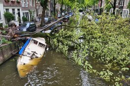 Boom valt op boot in gracht Amsterdam