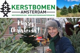 Gaat u voor een echte kerstboom dit jaar? Ga dan langs bij Kerstboom Amsterdam