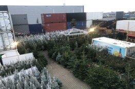 """Jonge ondernemers vinden nieuw doel als """"Kerstboom Meneer"""""""