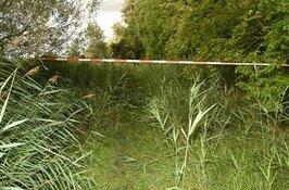 Wie heeft meer informatie over de gewelddadige dood van Krzysztof Malinowski?